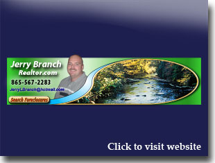 Link to website for Jerry Branch realtor