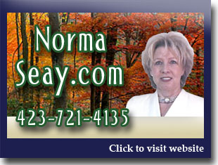 Link to website for Norma Seay realtor