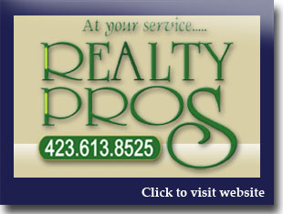 Link to website for Realty Pros