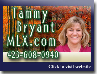 Link to website for Tammy Bryant MLX